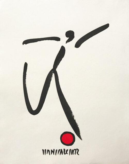 Fussball Hans Salcher Bild