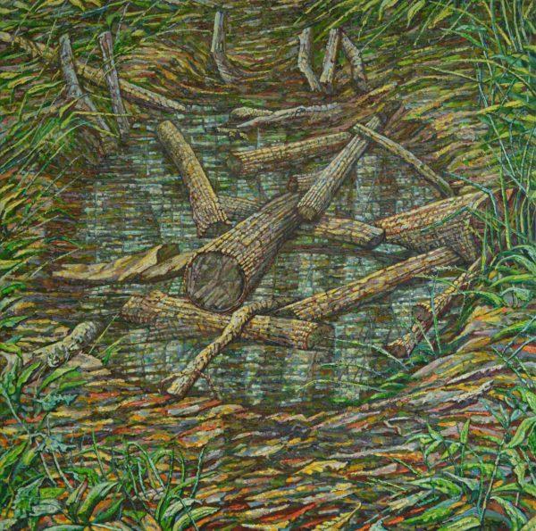 Remembered Pond Forgotten Logs Noel Paine Bild