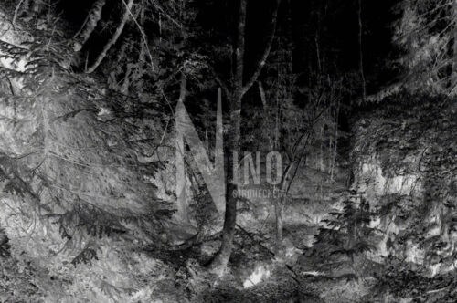 Schwarzschattige Gefuehlswelten Nr 1 Nino Strohecker Fotografie