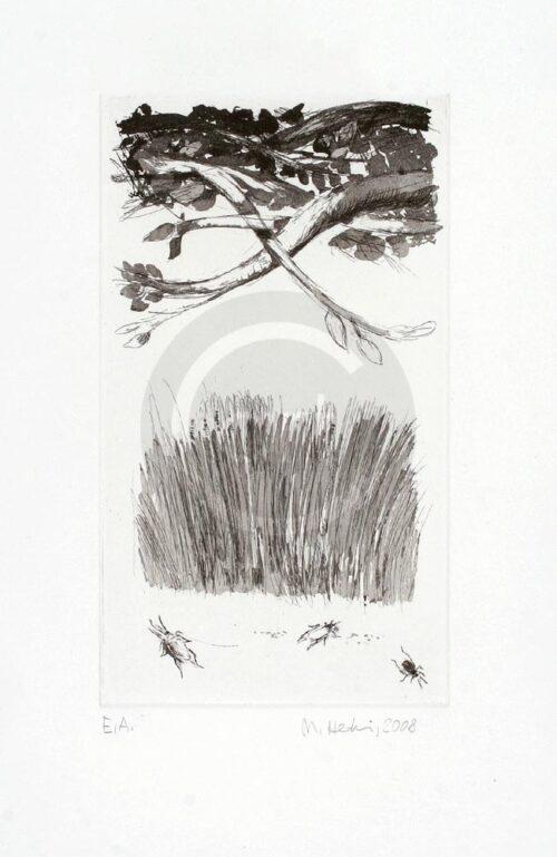 Sterntaler Nr 11 Michael Hedwig Bild Radierung