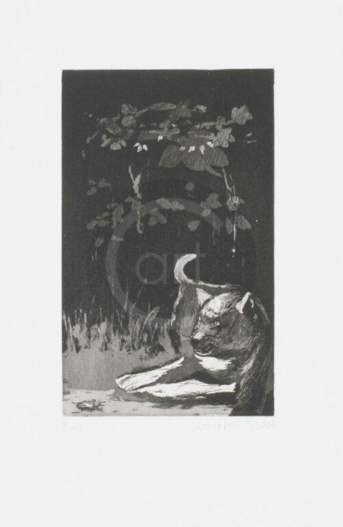 Sterntaler Nr 12 Michael Hedwig Bild Radierung