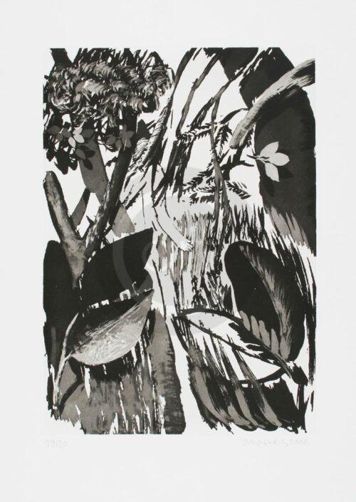 Sterntaler Nr 14 Michael Hedwig Bild Radierung